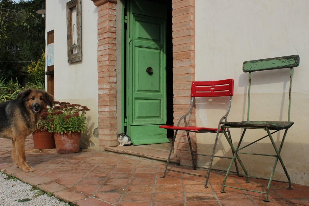 Umbria Montone Agriturismo Countryhouse L'ARIETE