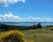 Lago Trasimeno Umbrien