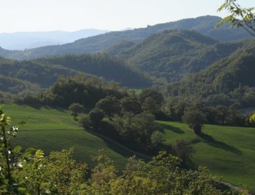 Hiking in Umbria: hiking trail nr. 2